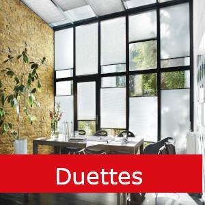 Duettes Hoogeveen